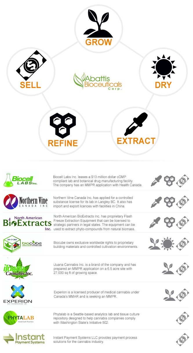 Infographic pdf seed