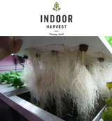 Indoor Harvest Corp.