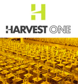Harvest One Capital Inc.