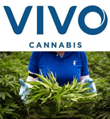 VIVO Cannabis Inc.