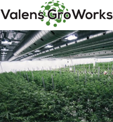Valens GroWorks Corp.