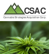 Cannabis Strategies Acquisition Corp.